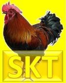 讀書會工作坊區:skt超級觀音療法.JPG