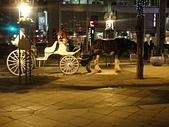 2011.12.28-29 Denver-義大利之旅+酒莊:EX (175).jpg