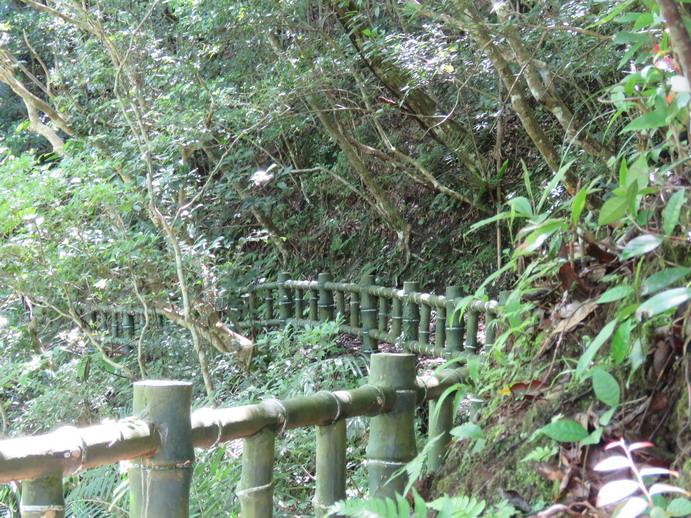 1060701象山移訓之北橫之旅:0702幽靈瀑布步道DSC_0258b_調整大小.JPG