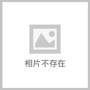 2019_桃園~草嶺山 白石山 石龜坑山