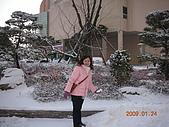 2009/1/23-1/27韓國行:DSCN4956.JPG