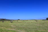 2016 紐西蘭南島之旅:TOP_5068.jpg