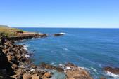 2016 紐西蘭南島之旅:TOP_5377.jpg