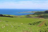 2016 紐西蘭南島之旅:TOP_5351.jpg