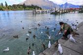 2016 紐西蘭南島之旅:TOP_4273.jpg