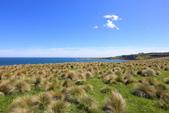 2016 紐西蘭南島之旅:TOP_5361.jpg
