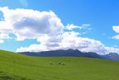 2016 紐西蘭南島之旅:TOP_4907.jpg