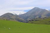 2016 紐西蘭南島之旅:TOP_3651.jpg