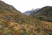 2016 紐西蘭南島之旅:TOP_3762.jpg