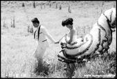 【自助婚紗費用>推薦T.S】>>【推薦】TS-PHOTO婚紗攝影工作室:自助婚紗 、自助攝影、婚紗攝影工作室_02.jpg