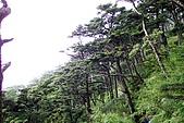 屏東好風光:大武山之美15.JPG