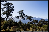 從武嶺至合歡山到關原的沿途雲山景觀可真是美絕了。:武嶺合歡山關原012.jpg