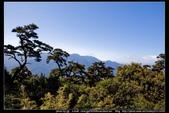 從武嶺至合歡山到關原的沿途雲山景觀可真是美絕了。:武嶺合歡山關原013.jpg