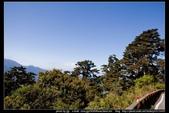 從武嶺至合歡山到關原的沿途雲山景觀可真是美絕了。:武嶺合歡山關原014.jpg