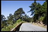 從武嶺至合歡山到關原的沿途雲山景觀可真是美絕了。:武嶺合歡山關原015.jpg