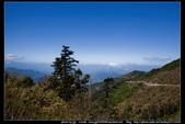 從武嶺至合歡山到關原的沿途雲山景觀可真是美絕了。:武嶺合歡山關原020.jpg