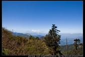 從武嶺至合歡山到關原的沿途雲山景觀可真是美絕了。:武嶺合歡山關原021.jpg