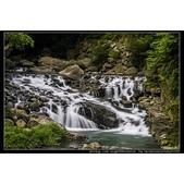 新北市三峽區『滿月圓國家森林遊樂區』:相簿封面