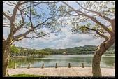 台北市內湖區『大湖公園』:大湖公園07.jpg