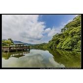 桃園市龍潭區『三坑自然生態公園』倒影很美也有直擊到夜鷺捉魚的鏡頭:相簿封面