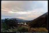陽明山的『夢幻湖』與『七星公園』:夢幻湖與七星公園05.jpg
