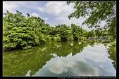 桃園市龍潭區『三坑自然生態公園』倒影很美也有直擊到夜鷺捉魚的鏡頭:三坑自然生態公園06.jpg