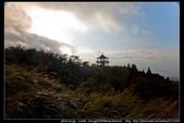 陽明山的『夢幻湖』與『七星公園』:夢幻湖與七星公園16.jpg