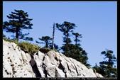 從武嶺至合歡山到關原的沿途雲山景觀可真是美絕了。:武嶺合歡山關原001.jpg
