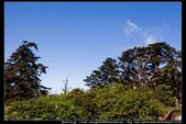 從武嶺至合歡山到關原的沿途雲山景觀可真是美絕了。:武嶺合歡山關原007.jpg