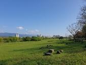 旅遊景點:宜蘭河濱公園