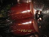 蜘蛛:IMG_5889.jpg-1.jpg-1