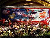 2013台南公園蘭花展:IMG_0909.JPG-1.jpg