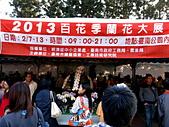 2013台南公園蘭花展:IMG_0906.JPG-1.jpg