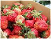 大湖草莓:189