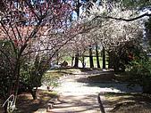 中橫之旅:福壽山農場