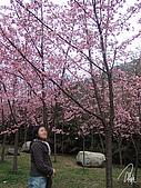 中橫之旅:武陵農場