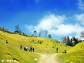中橫之旅:青青草原
