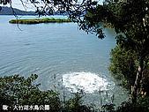 中橫之旅:日月潭支流出口