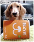 Cookie參賽資料:再次榮登我的狗