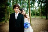婚紗照:1787233504.jpg