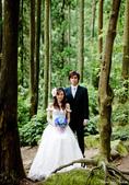 婚紗照:1787233505.jpg