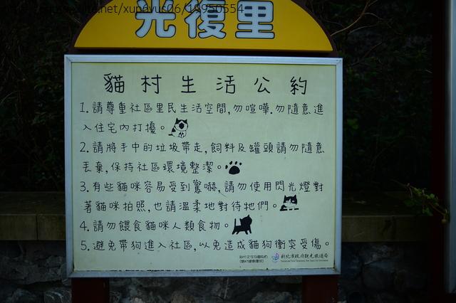 猴硐賞貓:JIN_2665.JPG