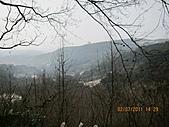 大屯溪古道 2011-2-7:IMG_8186.JPG