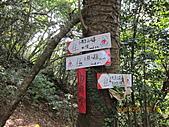 大屯溪古道 2011-2-7:IMG_8172.JPG