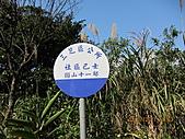 大屯溪古道 2011-2-7:IMG_8150.JPG