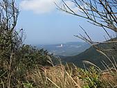 大屯溪古道 2011-2-7:IMG_8179.JPG