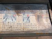 大屯溪古道 2011-2-7:IMG_8134.JPG