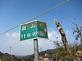 大屯溪古道 2011-2-7:IMG_8135.JPG