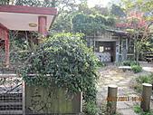 大屯溪古道 2011-2-7:IMG_8136.JPG