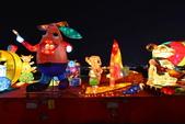 2015台灣燈會烏日高鐵燈區:2015台中燈會12.JPG